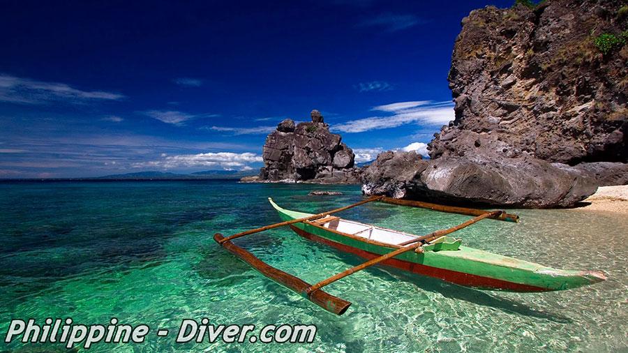Diving Apo Island