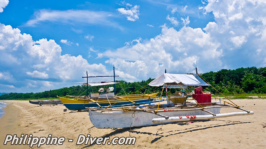 puerto galera singles Solo diving no problem we've got you covered in this ultimate dive guide for  single divers for more world's best diving, head to sport diver.