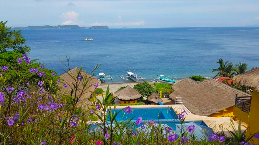Eagle Point Beach and Dive Resort- Batangas- swimming pool View